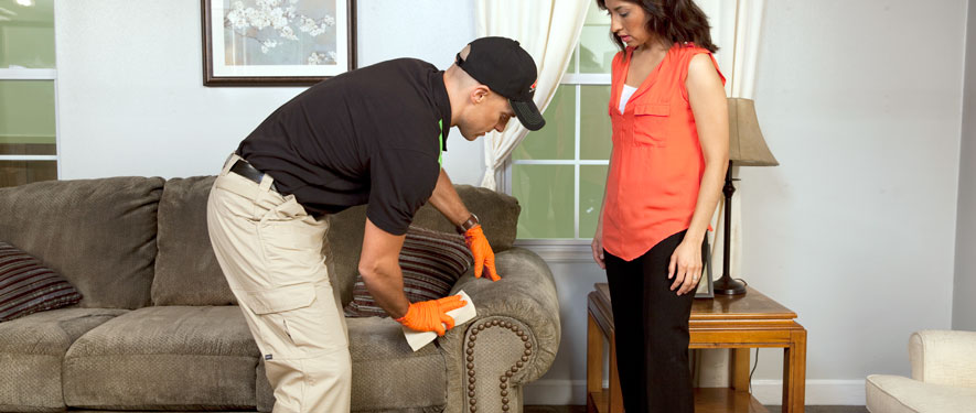 San Ramon, CA carpet upholstery cleaning