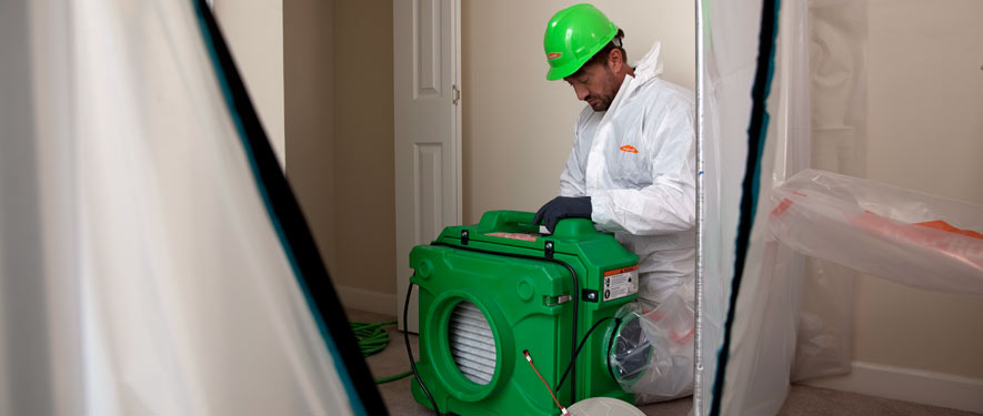 San Ramon, CA mold cleanup